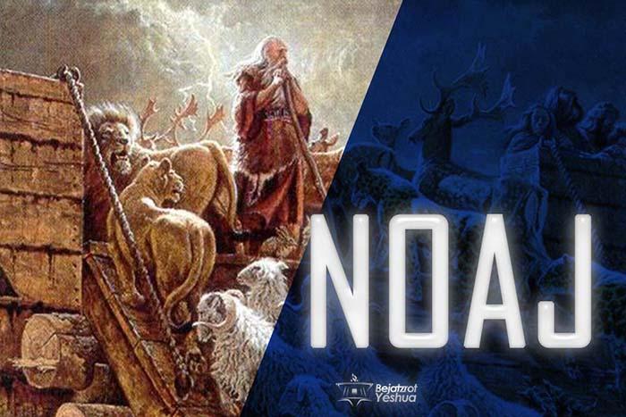 02. [VIDEO] NOAJ/NOÉ